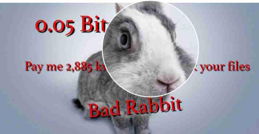 Bad Rabbit Malware